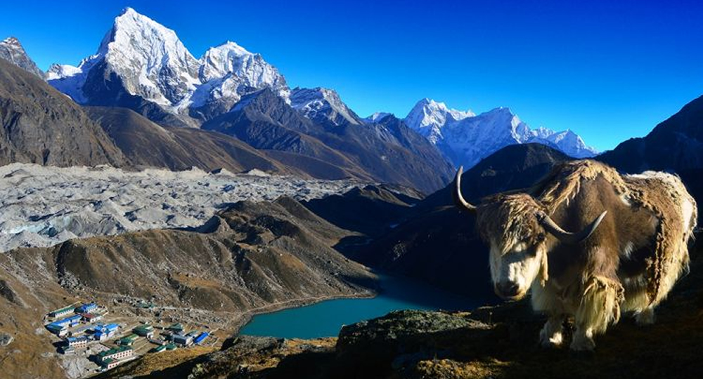 trekking adventure in india